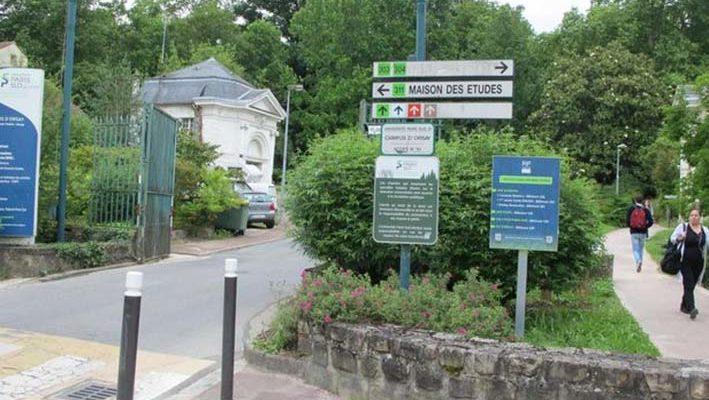Essonne : un cours en ligne gratuit dévoile les secrets des « herbes folles »