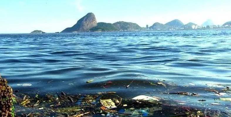 ONU Meio Ambiente promove curso online em português sobre lixo marinho